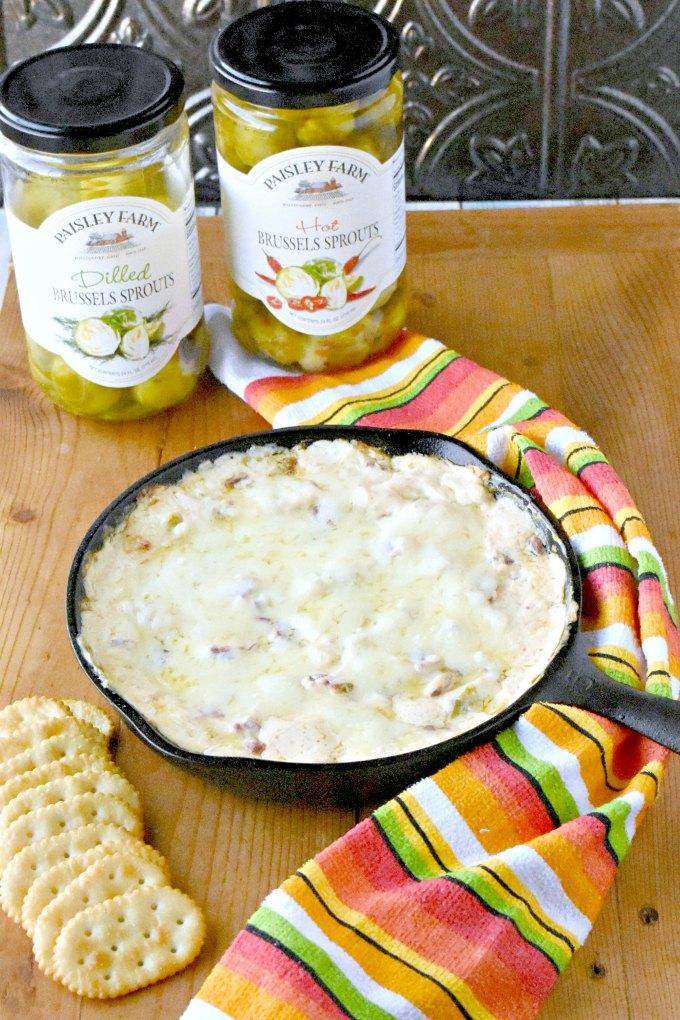 Skip the sauerkraut and try adding some Paisley Farm pickled Brussels sprouts in this delicious dip. Hot Reuben and Sprouts Dip is creamy, full of flavor, and comes together easily. Your family will ask for it every holiday! #paisleyfarm #paisleyfarmfresh #kroger @paisley_farm @krogerco