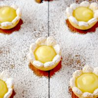 Lemon Daisy Tartlets