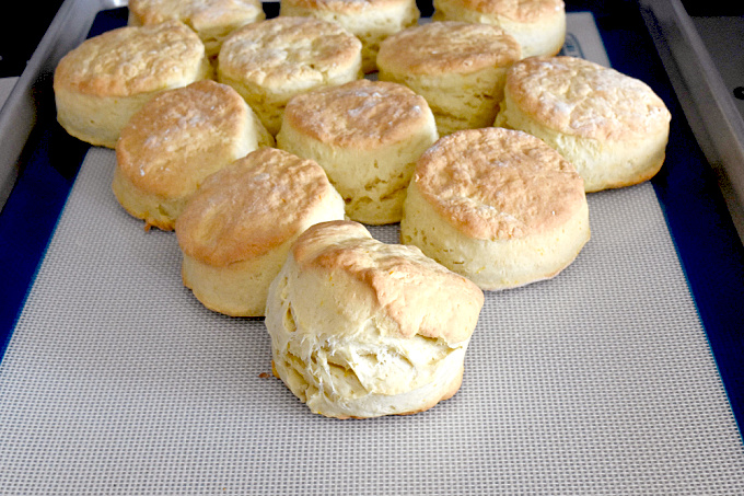 Meyer Lemon Scones have a hint of lemon flavor in a British style scone.  They're taller, less sweet, and oh so delicious spread with lemon curd. #FallFlavors