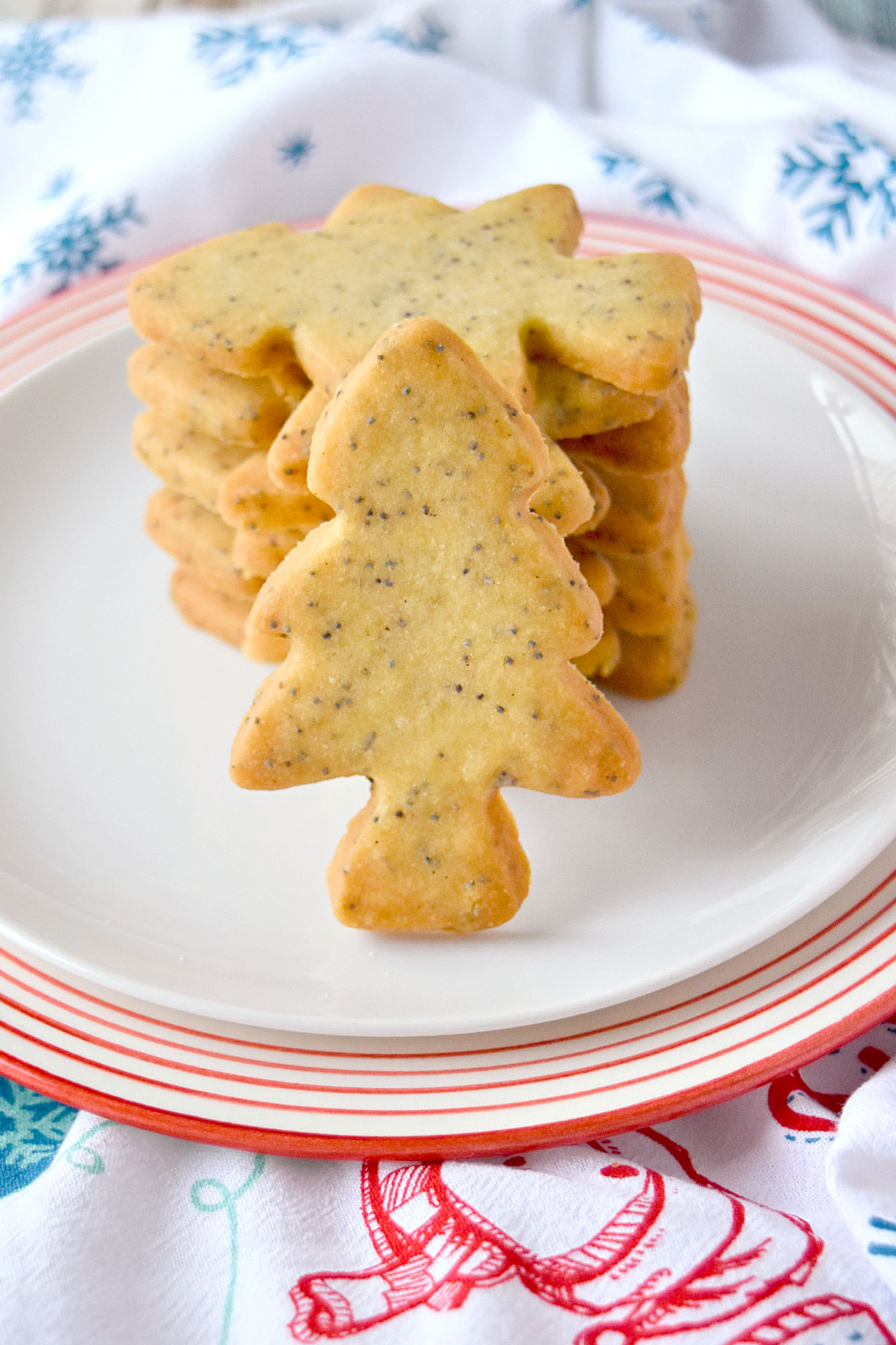 Poppy Seed Shortbread is tender and flaky shortbread speckled with poppy seeds. They're buttery, rich, and simply delicious. #ChristmasCoookies
